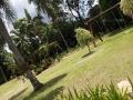 jardim 5
