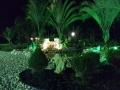 jardim 9